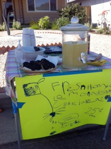 Fresh Homemade Lemonade and Cookies. 25 cents!
